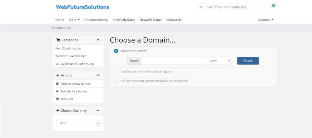 WebFutureSolutions Domain Options